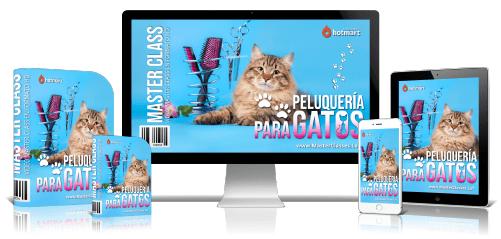 Peluquería Para Gatos Curso Online