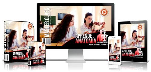 Anatomía Para Principiantes Curso Online