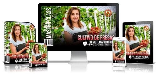 Cultivo de Fresas en Sistema Vertical Curso Online